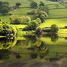 Green Fields by saxonfenken