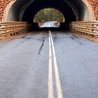 The Bridge by Eve Parry