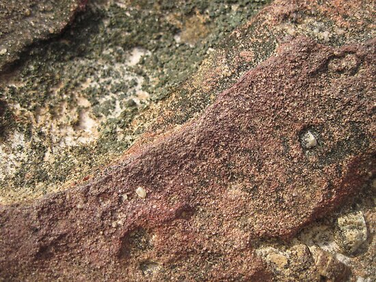 Rock Macro by Hugh Fathers