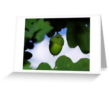 Green Oak Greeting Card