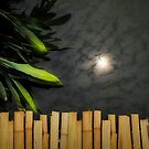 Bamboo bridge by Laurent Hunziker