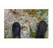 CHILLY TOES Art Print