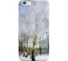 Winter Silver Birch Trees iPhone Case/Skin