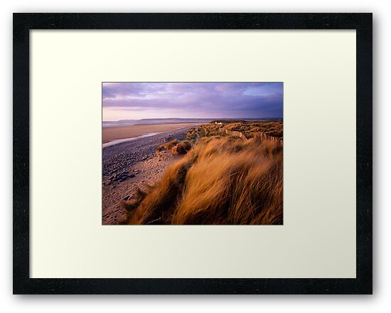 Sand Dunes at Westward Ho!, Devon by Craig Joiner