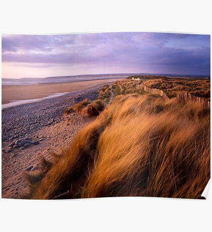 Sand Dunes at Westward Ho!, Devon Poster