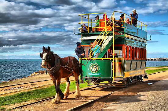 Horse Drawn Tram by Shannon Rogers