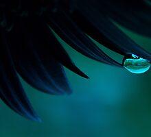 Bubble Blue by Ingz