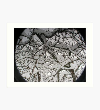 Snowy Apple tree Art Print