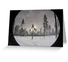 Winter sunset in Sweden Greeting Card