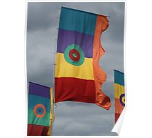 Flags Poster