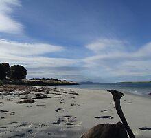 Saltworks Estuary looking east by NannaGilly