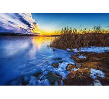 Frozen Plume of Great Meadow Sun Photographic Print