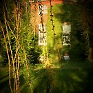 EATON PARK , NORWICH, NORFOLK by ANNETTE HAGGER