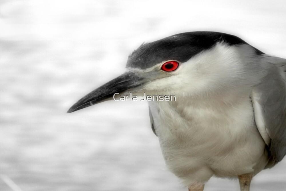 Blue Heron by Carla Jensen