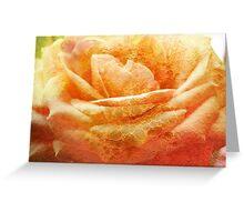 Painting Cream Rose. Greeting Card
