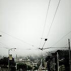 foggy San Francisco by pimp