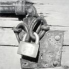 Detail of an old latch by Michele Filoscia