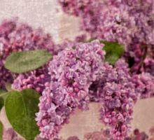 Lilacs In The Box Sticker