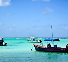 St. Lawrence Gap Barbados by Tarrby