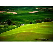 Green Fields Photographic Print