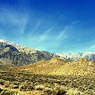 """""""Eastern Sierras"""" by Lynn Bawden"""