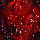Rose Red. by Vitta