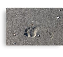 Lonely Footprint Canvas Print