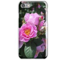 Pinky coloured Roses iPhone Case/Skin