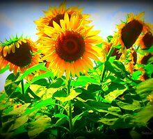 Sunflower Vignette ~ Make A Wish Foundation by Debbie Robbins