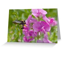 Busy Bumble Greeting Card
