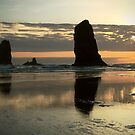 Oregon Coast by Ray4cam