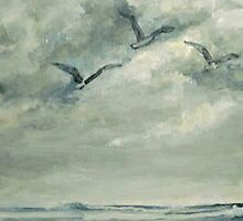 Gulls by J Anderson