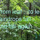 rainy season haiku poem by Ljikob