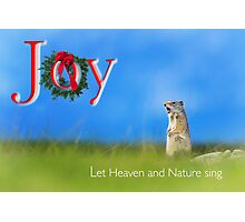 Joy... Let Heaven and Nature sing Photographic Print