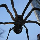 spider! by Ljikob