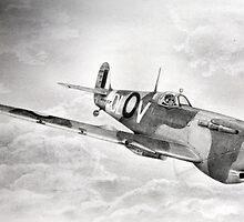 Spitfire by Lorraine  Stern