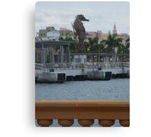 Seahorse Old San Juan Canvas Print