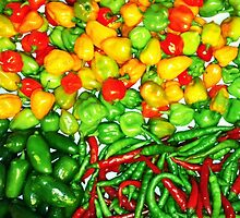 Many Peppers Two by Sharon Thorp