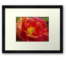 Painting Tulip. Framed Print