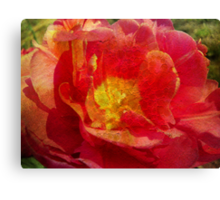 Painting Tulip. Canvas Print