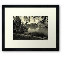 Willow Weaving Dreaming Framed Print