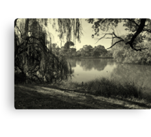 Willow Weaving Dreaming Canvas Print