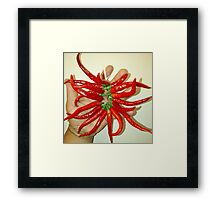 Long Thin Cayenne Peppers Framed Print