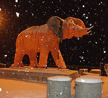 Elephant in a Snowsuit by hollaay