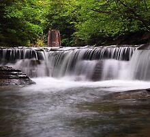 Stony Brook State Park NY by Paul Swiatkowski