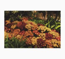 The Richness of Autumn - an Exuberant Display of Chrysanthemums  One Piece - Short Sleeve