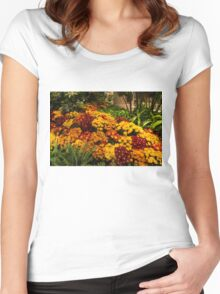 The Richness of Autumn - an Exuberant Display of Chrysanthemums  Women's Fitted Scoop T-Shirt