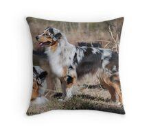 Australian Shepherd Montage Throw Pillow