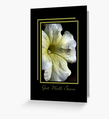 Get Well Soon - White and Green Flower Greeting Card