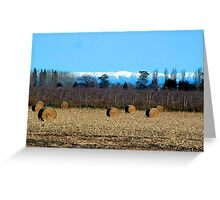 HAYBALES AND SNOWY MOUNTAIN RANGE Greeting Card